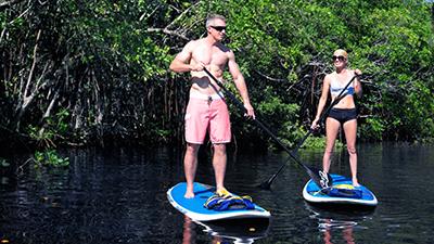 Naples Florida Rentals